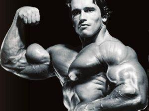 pico del biceps Arnold