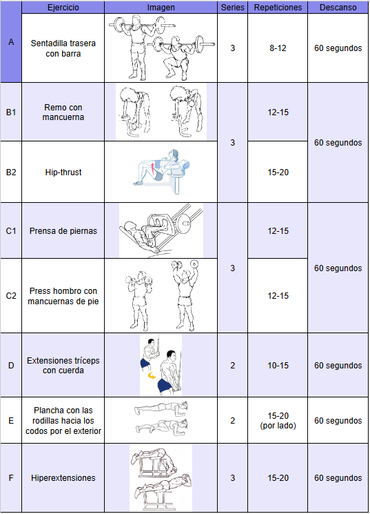 tabla de ejercicios principiantes