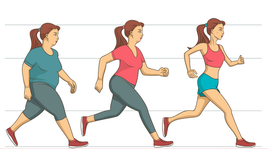 perder peso sin contar calorias