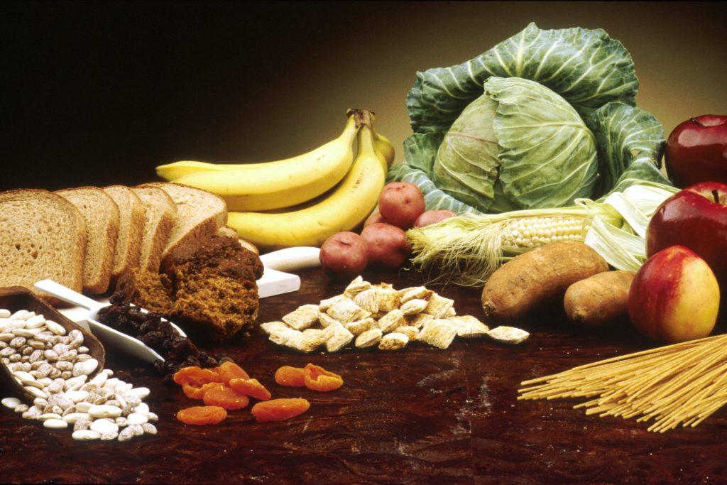 carbohidratos y utilizacion de la glucosa